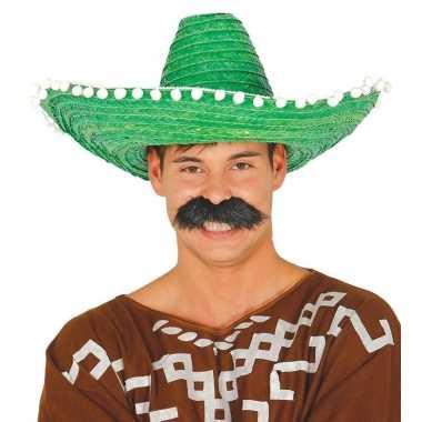 Groene sombrero/mexicaanse hoed volwassenen