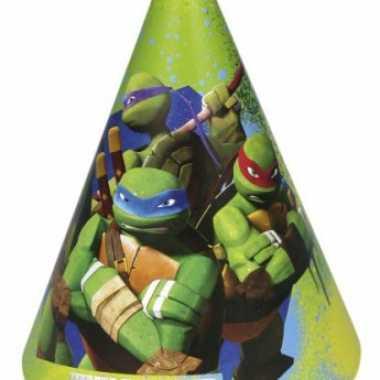 Ninja turtles feesthoedjes 6 stuks