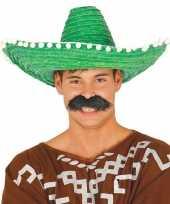 Groene sombrero mexicaanse hoed volwassenen