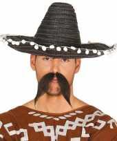 Zwarte sombrero mexicaanse hoed volwassenen